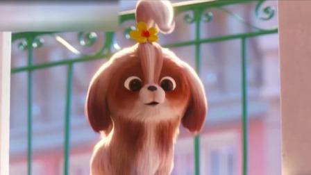 每日文娱播报 2019 我爱看电影:《爱宠大机密2》传达温暖和勇气