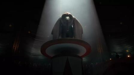 《小飞象》大耳朵小象不断努力成为马戏团明星,萌神小像暖心逆袭传奇