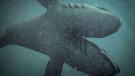 变异双头鲨鱼不仅团灭学生团,连小岛都给撞沉了