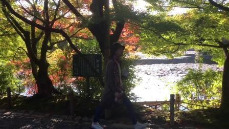 京都大阪旅行日记