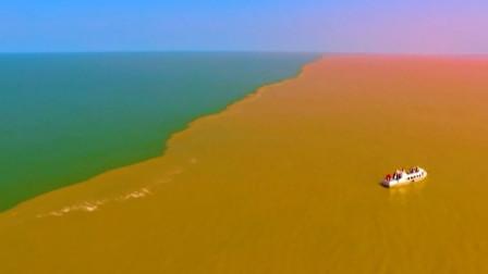 黄河每年产出16亿吨泥沙,为什么渤海却始终没有被填满?
