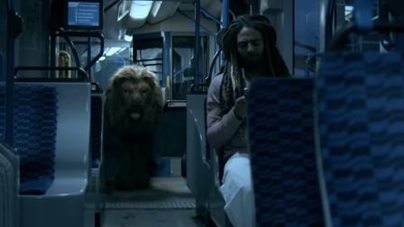 这头巨型狂暴狮连特种部队都拿它没辙,却被一位残疾的轮椅哥捕获!