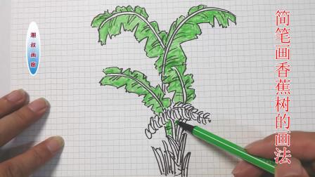 简笔画儿童画教程十九香蕉树的画法
