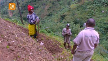 非洲深山,出现大面积的梯田,究竟是谁所为?