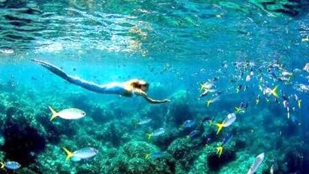 """唯一活在海底的民族,能在海底正常行走!一旦踏上陆地,就会""""晕倒"""""""