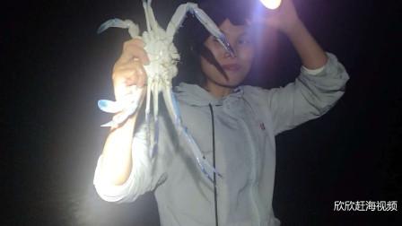 欣欣赶海收获真大,这大虾,这大螃蟹,这大海胆,回家煮宵夜真爽
