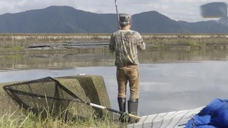 遛了半天 腰都快散架了 大鱼才露出了水面