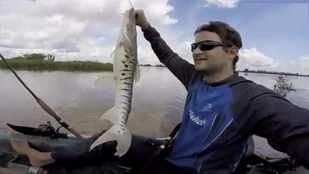 两根鱼竿先后中大鱼 手脚忙乱的