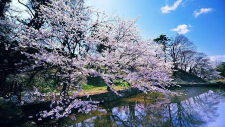 关于日本:你不能没去过的北海道3大景点!