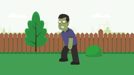 【植物大战僵尸】Peter的植物大战僵尸-OMG僵尸植物大战僵尸