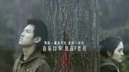 贞贞广场舞《邂逅回忆》口琴:老兵     演唱:风语     编舞:雨夜
