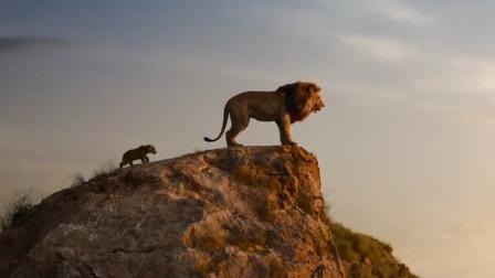 【酷影爆点料】《狮子王》成内地票房冠军,创下迪士尼动画真人版内地票房新高