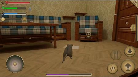 老鼠模拟器 与配偶散步 生存建造模拟手游