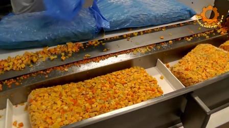 实拍外国工厂生产蔬菜泥,网友:真材实料,良心企业