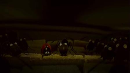 虫虫危机,运输食物过程遭遇红蚂蚁劫持穷追不舍