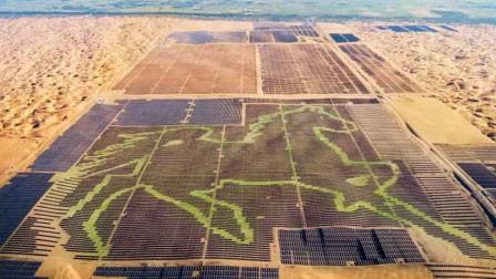 世界最大!19万块光伏板拼成巨型骏马 驰骋内蒙古沙漠