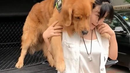 """狗狗因为打针吓得腿软,必须还要主人背着,真是太丢""""狗脸了"""""""
