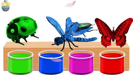 一盒玩具让孩子们学习昆虫的名字和声音学习动物的名字