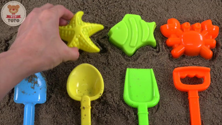 海洋动物沙模玩彩虹铲学习海洋动物名称数字和颜色