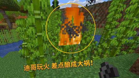 我的世界第三季102:迪哥玩火点燃竹林,差点酿成大祸!