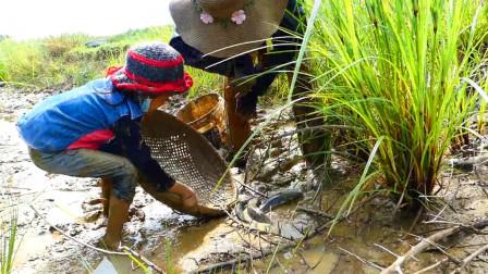 家里没肉了,妈妈带着小女儿一起去水渠舀水抓鱼,看看抓了多少?