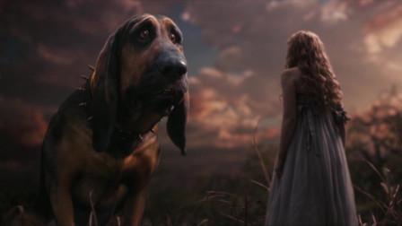 四分半看《爱丽丝梦游仙境》,童话里的仙境