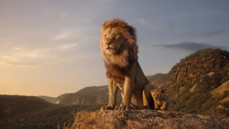 《狮子王》回忆杀来袭,丛林瀑布视觉震撼,丁满彭彭友情助攻