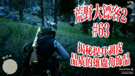 荒野大镖客2 63 解密提升剥皮品质的雄鹿饰品 Madao游戏解说