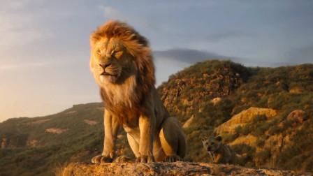 《狮子王》童年经典重现,不一样的观感体验,这个暑假注定泪如泉涌!