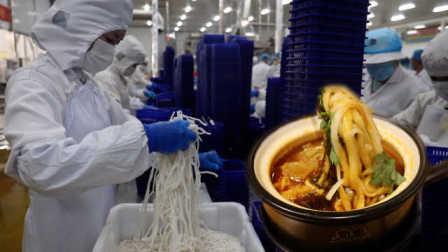 走进土豆粉工厂,探秘河南特色风味小吃:年产近万吨