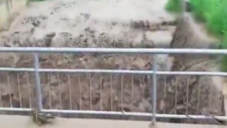 洪水冲毁铁路线 火车司机紧急停车避险救下一车人