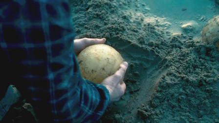 男子从海边捡到一个怪蛋,带回去孵化后闯下大祸,整个小镇遭殃了