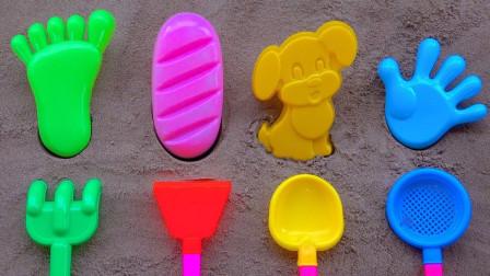 玩沙子模型和玩具铲子 用沙子DIY小狗、面包 儿童学习颜色和数字