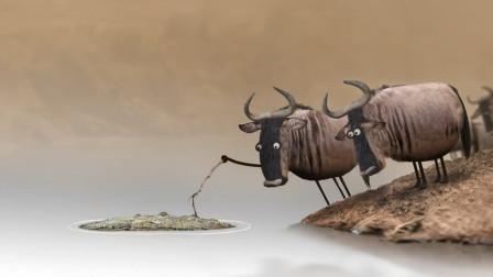 两只牛抬杠一只认为是鳄鱼,另一只认为是木头,最后现实教你做人