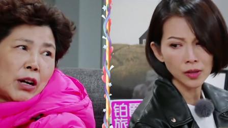 蔡少芬和婆婆拌嘴,婆媳关系难梳理,张晋:为什么这样对我