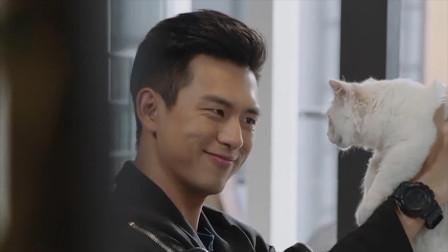 亲爱的热爱的:韩商言逗猫,问致命题:猫咪可爱,还是我可爱?