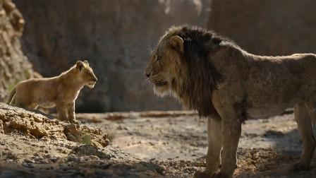 狮子王:25年后经典再现,你从新版狮子王中学到了什么