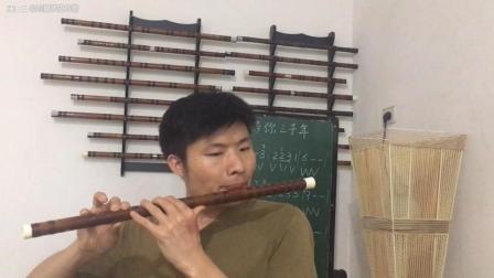 D调笛子《梅花泪》