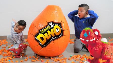 这是什么玩具蛋啊?有什么秘密么?为何萌宝小正太和恐龙都惊呆?