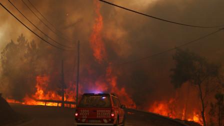 葡萄牙山火已致32人受伤 1男子因涉嫌纵火被捕