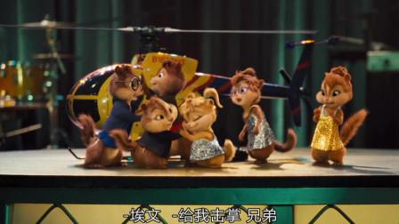 """鼠来宝2:""""花栗鼠""""回归,6只""""花栗鼠""""同台演出,各个成双成对!"""