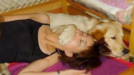 """女子养了狗狗每天抱着睡觉,感觉身体不舒服,去检查后""""傻了"""""""