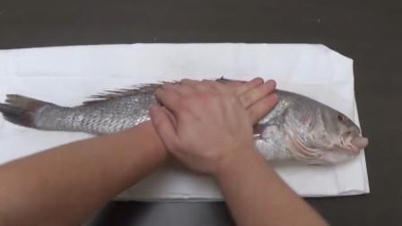 鱼在水里会被淹死?,教你如何正确的淹死一条鱼,涨知识了