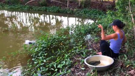 野外鱼多无人钓,农村姑娘出来钓一钓,看看她钓了多少?