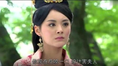 兰陵王最解气的片段, 雪舞被掳走, 晓冬为雪舞鸣冤, 四爷悔恨不已!