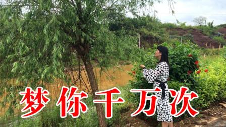 广西姑娘一首《梦你千万次》浓浓的深情,经典耐听!