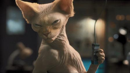 速看电影《猫狗大战2》之《珍珠猫的复仇》