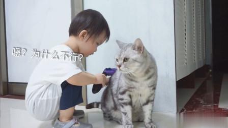 2歲小寶寶學習照顧三只貓咪!貓:這家伙是來搞笑的嗎?