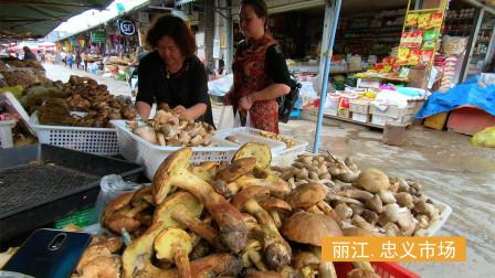 丽江忠义菜市场,这里的松茸菌子价格可真贵!