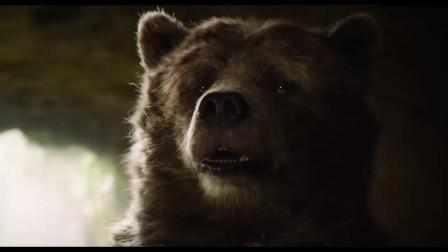 少年险被蟒蛇一口吞掉,危机时刻,大熊从蟒蛇口下救出